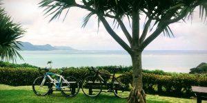 ロードバイクとのばれ崎観光農園
