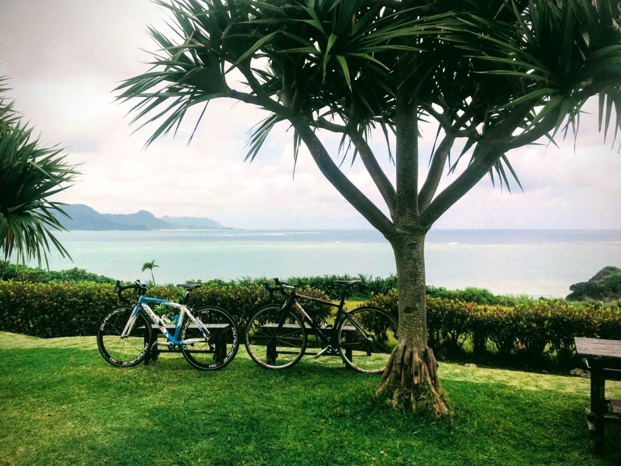 ロードバイクとのばれ岬観光農園